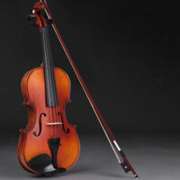 Student 4/4 Full Size Violin Wood Natural Acoustic Fiddle w/ Case Bow Rosin Wood