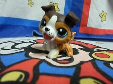 Littlest Pet Shop #237 Collie Dog with Open Mouth