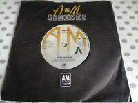 "PETER FRAMPTON I'M IN YOU 45 7"" vinyl 1977"