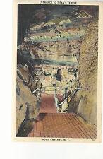 Entrance To Titan's Temple   Howe Caverns  NY  Unused  Postcard 764
