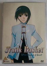 FRUITS BASKET: WHAT BECOMES OF SNOW?, ANIME, REGION 2 & 4 DVD.