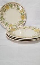 Taylor Smith Taylor Taylorstone Daisy Wreath Green 10 1/4 in Dinner Plates (4)