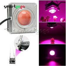 60W COB LED Grow Light Full Spectrum Lamp Cooling Fan For Hydroponic Veg BSG