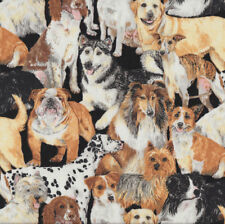 Dogs Border Collie Terrier Greyhound Bulldog Quilting Fabric FQ or Metre