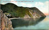 Vtg 1909 Descanso Canyon from Sugar Loaf, Santa Catalina California CA Postcard