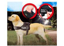 Pettorina Imbracatura Guinzaglio Per Cani Sport Dog Harness Con Maniglia Size M