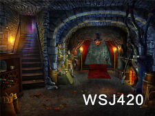 Halloween Vinyl Photography Backdrop Background Studio Props 20x10FT WSJ420