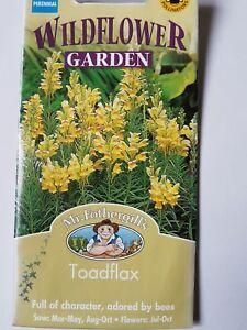 Mr Fothergills Wildflowers Toadflax Seed