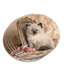 Ragdoll Tiffany Cat Kitten Victorian Roses Novelty Coaster Set