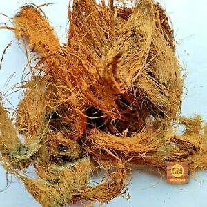 Coconut Husk Fiber Growing Media for Orchid, Anthurium & Hoya, Fruit Plant 50g