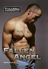 Fallen Angel by Media Titan (2005, Paperback) Like New Fast Free Shipping!