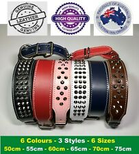 Cow Leather Dog Collar Lead Harness Staffy Bull Terrier All Sizes AUSSIE MADE