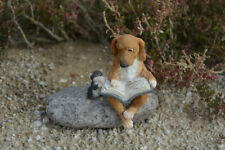 Garden Ornament Figurine Statue Dog And Cat Reading Book Home Garden Decor