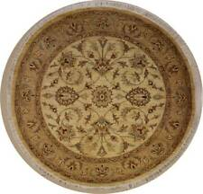 Rugstc 6x6 Senneh Chobi Ziegler Ivory Area Rug,Natural dye, Hand-Knotted,Wool