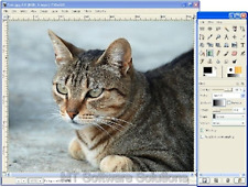 2016 Editor di immagini fotografiche per Windows 10, 7, 8.1 &... PHOTOSHOP compatibile