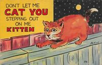 Vintage Dont let me Cat you stepping out on me Kitten Linen Postcard 1945