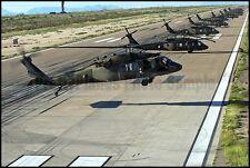 US Army UH-60 Black Hawk Helicopters Holloman AFB 2014 8x12 Photos