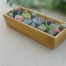 Sass /& Belle Set di tre Ria MINI fioriere vasi di piante Verde Oliva botanico ECO