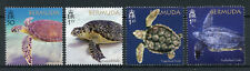 Bermuda 2018 MNH Turtle Project Green Hawksbill Loggerhead Turtles 4v Set Stamps
