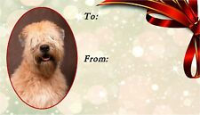 Soft Coated Wheaten Terrier Dog Self Adhesive Gift Labels by Starprint