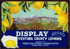 Ventura Display Scenic Lemon Citrus Fruit Crate Box Label Vintage Art Print