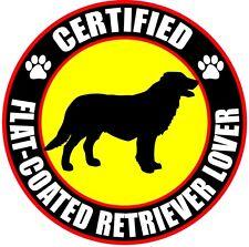"Certified Flat-Coated Retriever Lover 4"" Dog Sticker"