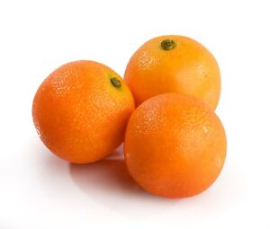 3 Large Best Artificial Oranges Decorative Realistic Fruit New