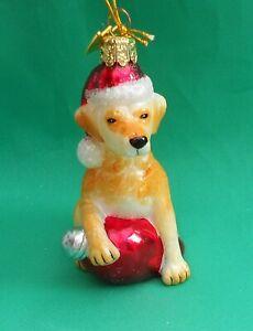 Noble Gems Glass Christmas Tree Decoration Dog Hat Golden Retriever