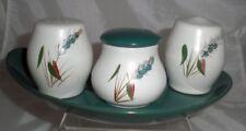 Denby Pottery Greenwheat Pattern Cruet Set Salt Pepper Mustard in Stoneware
