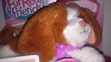 Hasbro  FurReal Friends Dress me Babies Haustier/ Hündchen mit Sonnenbrille