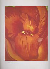 "Georgia O'Keeffe,  ""Canna--Red and Orange""  Botanical, Flower,  Art Print"