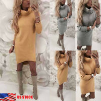 Women Winter Autumn Warm Turtleneck Knit Casual Long Sleeve Sweater Mini Dress