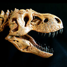 "JTS Tyrannosaurus Rex T-Rex ""Stan"" Complete Skeleton Replica Statue NEW"