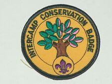 Intercamp - conservation badge - gold bakcgounrd