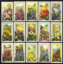 CIGARETTE CARDS. Gallaher Tobacco. WILD FLOWERS. (1939). (Complete Set of 48).