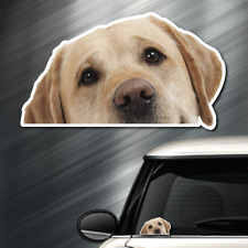 (1) Labrador Retriever DOG Peeper Sticker Window Peep Decal Car Auto Puppy lab