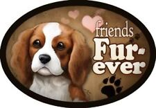"""Cavalier King Charles Spaniel - """"Friends Fur-ever"""" Oval Dog Magnet for Cars and"""