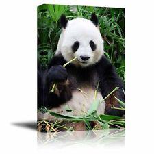 "Canvas Prints Wall Art - Giant Panda Eating Bamboo - 16"" x 24"""