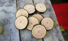 5 Baumscheiben, Holzscheibe, 30x2 cm, Esche