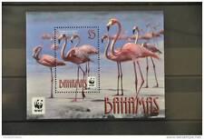 G 117 ++ 2012 BAHAMAS BIRDS VOGELS OISEAUX FLAMINGO ++ MNH POSTFRIS **
