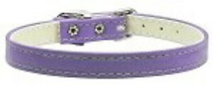 "Dog Cat Collar Size 8 Inches Purple 3/8"" Wide by Mirage Pets Made in the USA"