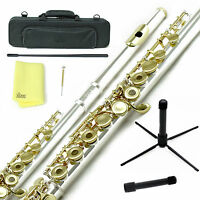 Sky Gold Silver Open Hole C Flute w Case, Stand, Cleaning Rod, Cloth and More