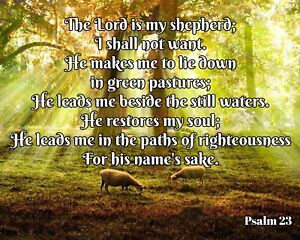 """10"""" x 8"""" THE LORD IS MY SHEPHERD I SHALL NOT WANT PSALM 23 METAL SIGN PLAQUE R82"""