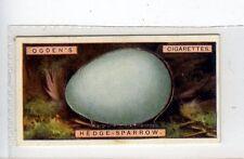 (Jc2997-100)  OGDENS,BIRDS EGGS,HEDGE-SPARROWS EGG,1923,#37
