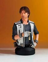 Gentle Giant Star Wars: Solo: Han Solo Mini-Bust