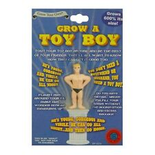 Développer une Toyboy Jouet Garçon Fun Drôle Nouveauté Blague Farce Fête Père Noël SECRET Adulte Cadeau
