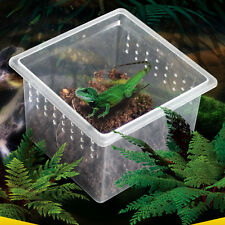 High Quality Feeding Container Reptiles Snakes Insects Spider Breeding Tank Box