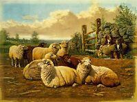 PAINTINGS AGRICULTURAL LANDSCAPE SHEEP DOG FARM PASTURE ART POSTER PRINT LV2993