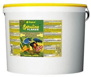 Tropical Spirulina Platensis Flakes 5000 ML Mangime per Pesci (7,63 €/ 1000 ML)