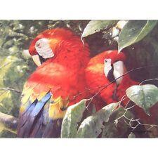 "John Seerey-Lester  ""Scarlet Macaw Pair"" #142/550 MINT w/ CERT"